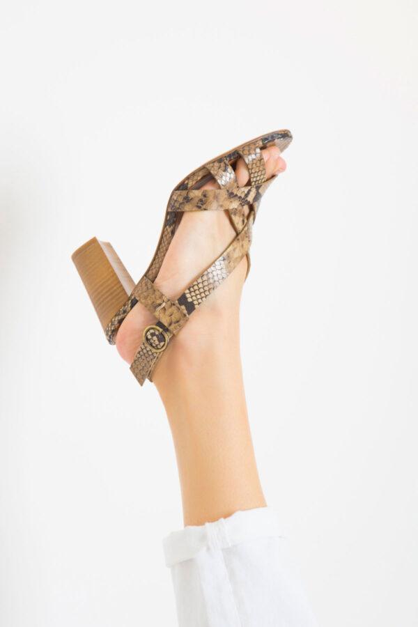 anthology-alesia-snake-shoes-heels-matchboxathens